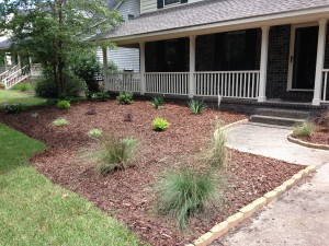 Charleston Landscaper Yard Makeover During 2