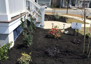 Charleston SC Landscape Design Makeover Installation After (1)