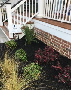 Charleston SC Landscape Design Mt. Pleasant Installation