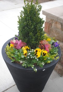 Lowcountry Vistas Charleston Landscaping Boxwood Arrangement