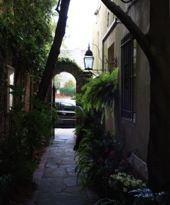 Charleston Landscaper downtown alley