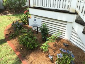 Charleston Residential Landscape Design Installation SC