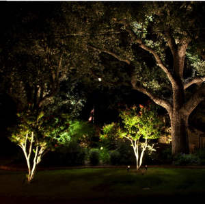 Charleston SC Landscape Design Landscape Lighting Oak