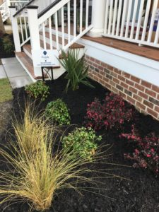 Charleston SC Landscape Designer Makeover Mt. Pleasant 2