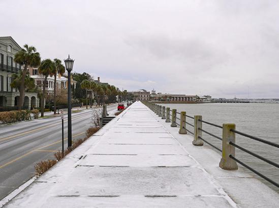 Charleston Residential Landscape Design - Battery Snow