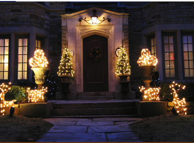 Charleston Residential Landscape Design - Christmas Landscape Lighting