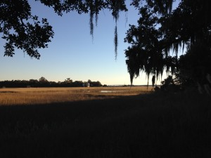 Lowcountry Vistas Charleston Salt Marsh